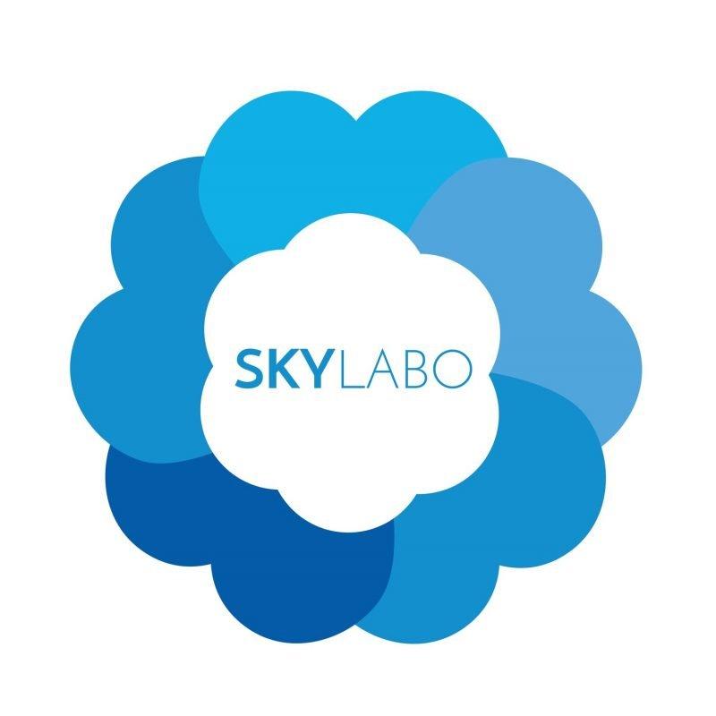 完璧でなくていい、アイディアを行動に移す STEM教育とデザイン思考、『STEM+α』教育のSKY Labo